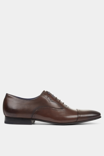 Ted Baker Murain Brown Oxford Shoe